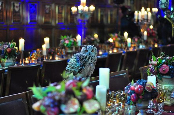 Magical Harry Potter Theme Wedding   Wedding Ideas ...