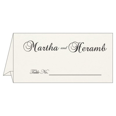 Table Cards - TC-8221N